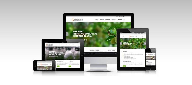 rwd響應是網頁設計-網站設計公司CTMaxs